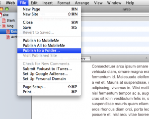 pulish_to_a_folder
